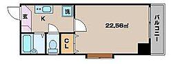 東京都墨田区緑1丁目の賃貸マンションの間取り