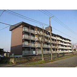 北海道苫小牧市矢代町3丁目の賃貸マンションの外観