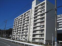 六浦荘団地[8階]の外観