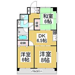 松本ナンバメゾン[3階]の間取り