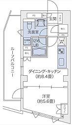 東京都渋谷区鉢山町の賃貸マンションの間取り