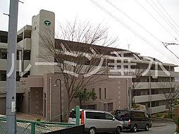 グランディアミアモーレ桃山台[5階]の外観
