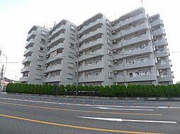 埼玉県鴻巣市下忍の賃貸マンションの外観