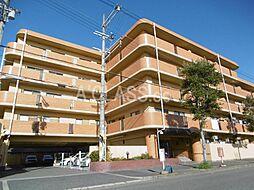 堺市西区浜寺石津町東3丁