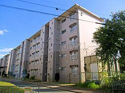 清和台住宅(公社分譲)[4階]の外観