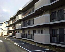 メゾン羽倉崎[2階]の外観