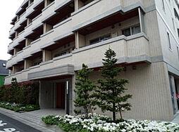シャンドール目黒[6階]の外観