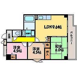 滋賀県大津市勧学2丁目の賃貸マンションの間取り