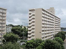 UR梨香台[10-508号室]の外観