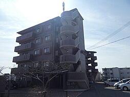 パールグレイス[2階]の外観