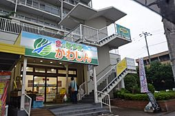 日商岩井中山マンション[714号室]の外観
