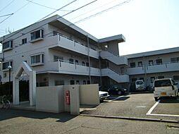 神奈川県茅ヶ崎市浜須賀の賃貸マンションの外観