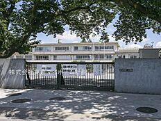 小学校 270m 小平市立小平第十一小学校