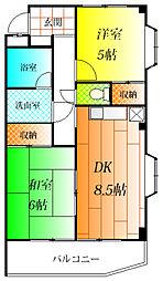 トレジャー島泉[3階]の間取り
