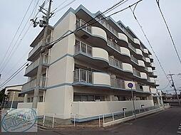 兵庫県明石市大観町の賃貸マンションの外観