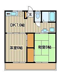 東京都練馬区南大泉5の賃貸アパートの間取り