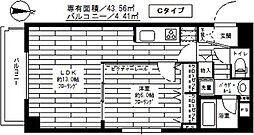 ステージファースト新中野[503号室]の間取り