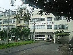 小学校川口市立上青木小学校まで841m