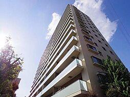 埼玉県さいたま市浦和区常盤4丁目の賃貸マンションの外観