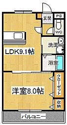 ドミール五番館[203号室]の間取り
