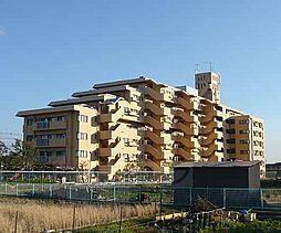 京都府京都市南区久世大薮町の賃貸マンションの外観