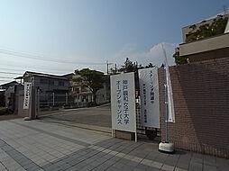 神戸北町ソレアードコートC棟[5F号室]の外観