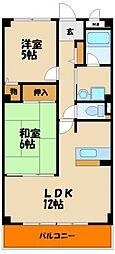 兵庫県神戸市西区枝吉5丁目の賃貸マンションの間取り