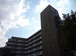 マルビシマンション[6階]の外観