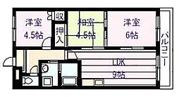フローラル マンション[5階]の間取り