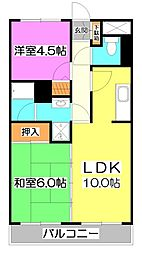 埼玉県新座市栄3丁目の賃貸マンションの間取り