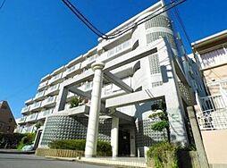 千葉県松戸市栄町7丁目の賃貸マンションの外観