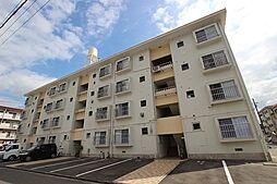 新宅第1マンション[206号室]の外観