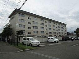 札幌西月寒団地4号棟[506号室]の外観