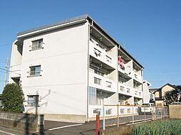 関井ハイツ[302号室]の外観