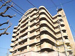 カワデンセントリックハイツ[6階]の外観