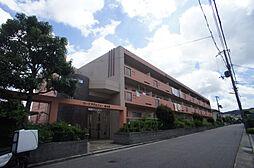 兵庫県神戸市北区南五葉5丁目の賃貸マンションの外観
