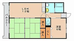 イーラックス松島[1階]の間取り