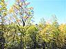 南西側バルコニーからの眺望,4SLDK,面積103.5m2,価格3,180万円,JR東海道本線 大船駅 徒歩16分,JR横須賀線 大船駅 徒歩16分,神奈川県鎌倉市大船