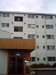 神奈川県川崎市高津区明津の賃貸マンションの外観