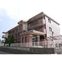 茨城県神栖市知手中央5丁目の賃貸マンションの外観