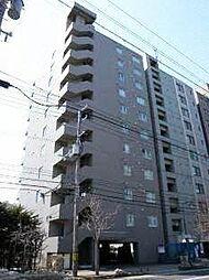 スカイアヴェニュー広和No15[11階]の外観