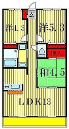 千葉県松戸市常盤平4丁目の賃貸マンションの間取り