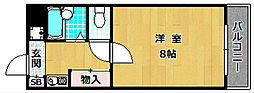 ラフィーネ枚方[1階]の間取り