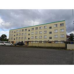 新潟県新潟市東区牡丹山4丁目の賃貸マンションの外観