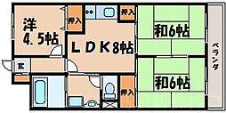 広島県広島市東区戸坂大上2丁目の賃貸マンションの間取り