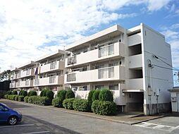 千葉県柏市増尾2丁目の賃貸マンションの外観