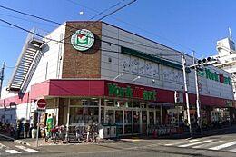 ヨークマート 中町店(170m)