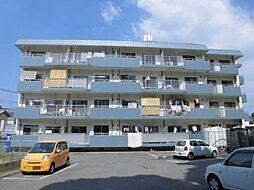 フェリースマンション[1階]の外観