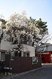 日暮里駅 4,500万円