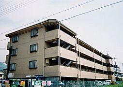大阪府八尾市高安町北1丁目の賃貸マンションの外観